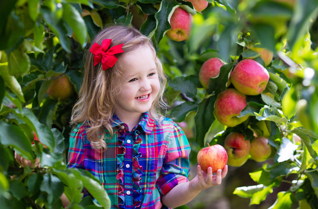 Celebrate National Apple Day 2018 with a Day at Alstede Farms in Chester, NJ