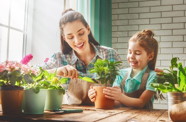 How to Make Your House More Environmentally Friendly