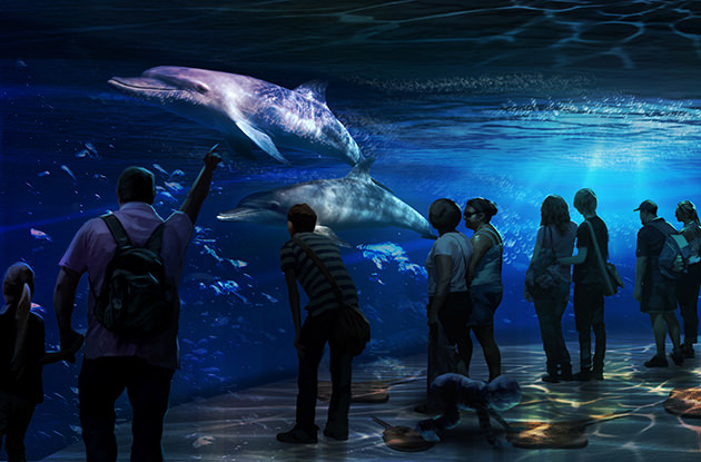 National Geographic Encounter: Ocean Odyssey to Open in Times Square This October