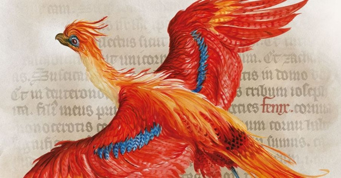 Wingardium Leviosa! Harry Potter: A History of Magic Opens