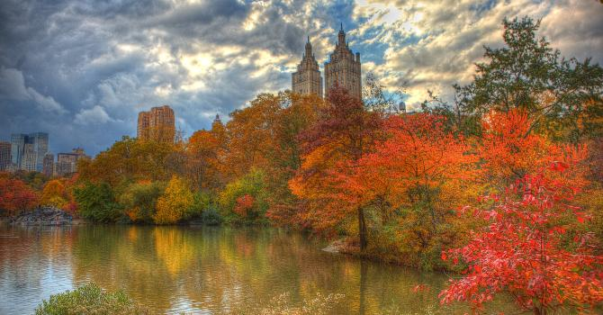 The Best Places to Spot Fall Foliage in NYC