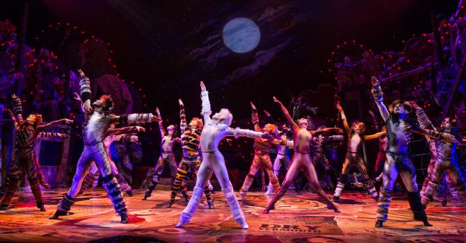 """Cats on Broadway: One for the """"Memory"""" Book"""