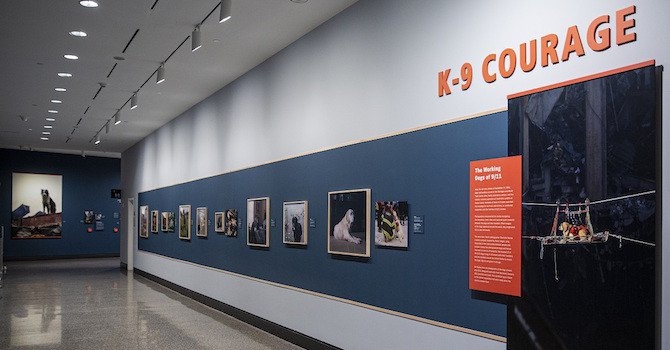 Hero Dogs: K-9 Courage Exhibition at 9/11 Museum