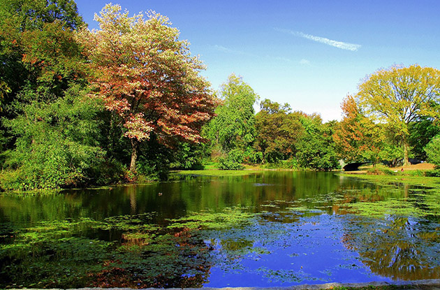 Celebrate Prospect Park's 150th Anniversary Weekend
