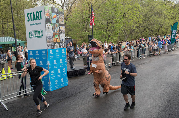Registration Now Open for WCS Run for the Wild at Bronx Zoo