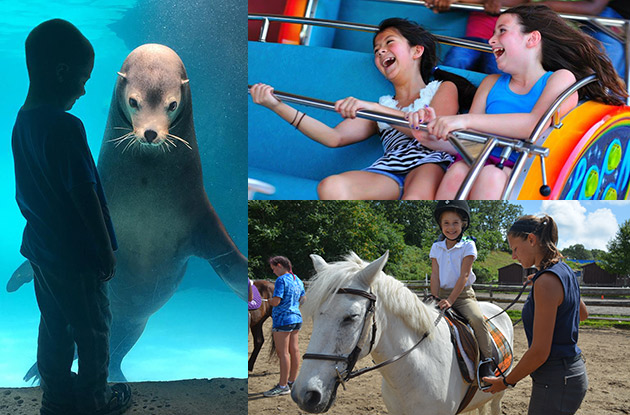 Instagram-Worthy Moments from Kids' Activities & Programs in Suffolk County
