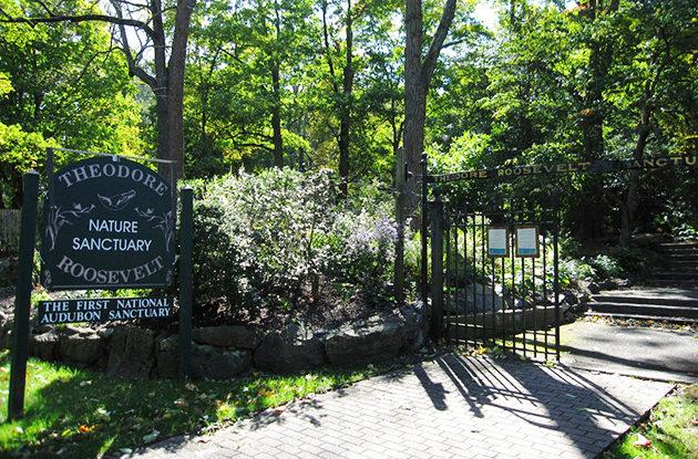 theodore roosevelt sanctuary