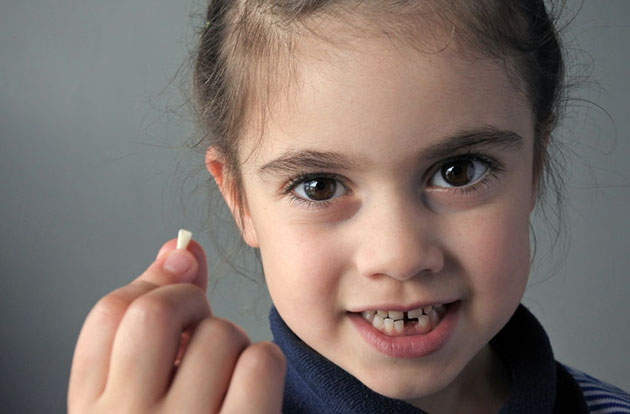 Can Teeth Be Put Back After Oral Trauma