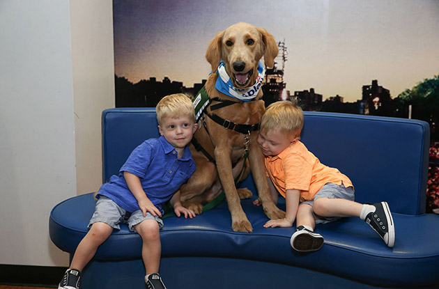 Paws and Play Program Launches at Mount Sinai's Kravis Children's Hospital
