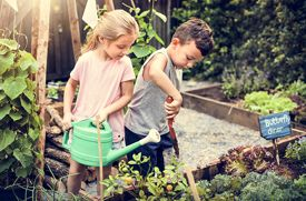 Brooklyn Schools Named Finalists in Recycled Garden Giveaway