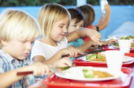 Summer Camps That Provide Lunch for Campers in Westchester County