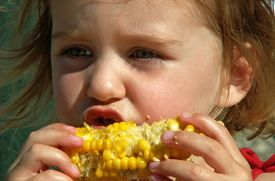 The 3 Rules of Healthy Eating in the Summer