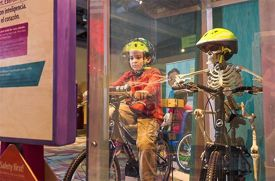 Health and Wellness Exhibit Healthyville Opens at the Long Island Children's Museum