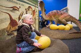 Long Island Children's Museum Debuts Dinosaur Exhibit