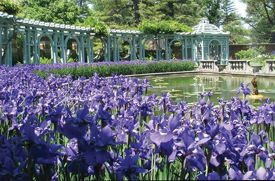 Things to Do in the Great Outdoors in Nassau County in May