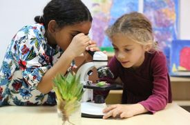 Science Language and Arts International School Moves to Carroll Gardens