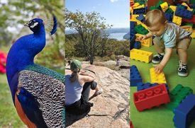 Can't-Miss Family Activities in Westchester, Rockland, and Fairfield Counties