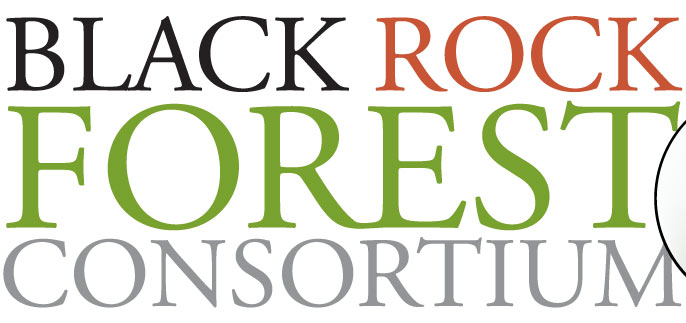 Black Rock Forest Consortium