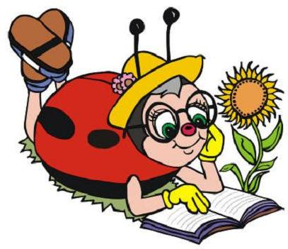 Ladybug Learning Club
