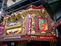 Ripley's Believe It or Not! Times Square Photos