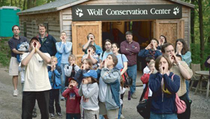 Wolf Conservation Center, Westchester County