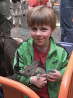 boy holding rabbit; Families First spring carnival, Brooklyn
