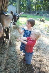 Rainbeau Ridge farm; kids on an animal farm; young children petting goats