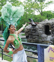 Jazz: Brooklyn's Beat; Brooklyn jazz festival; jazz at the Prospect Park Zoo