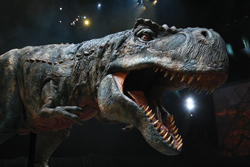 "Tyrannosaurus Rex roars in a scene from ""Walking With Dinosaurs - the Arena Spectacular."""
