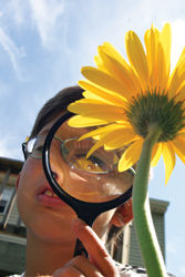 young boy using magnifying glass; exploring; sunflower; the quad manhattan