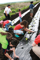 kids gardening; children in a field, farming, gardening