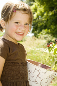 Where to Pick Your Own Berries in NY, NJ, and CT; young girl picking raspberries