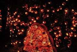 The Great Jack O Lantern Blaze; jack-o-lantern beehive