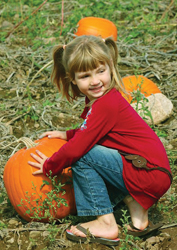 young girl in a pumpkin patch; pumpkin picking