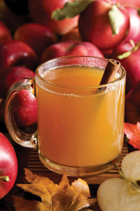 mug of apple cider with cinnamon