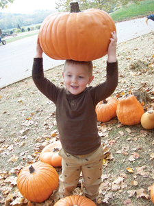 young boy carrying a big pumpkin; pumpkin picking farm