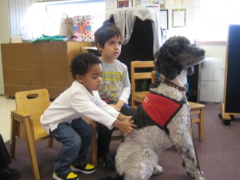 variety child learning center students with service dog