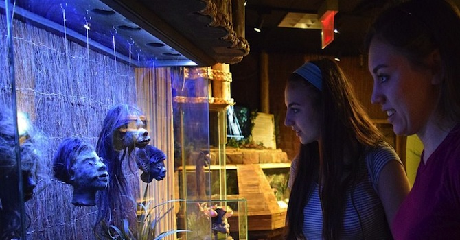 New York Coupons: Discount Code for Ripley's Believe It or Not!