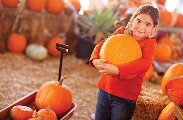 girl picking pumpkin