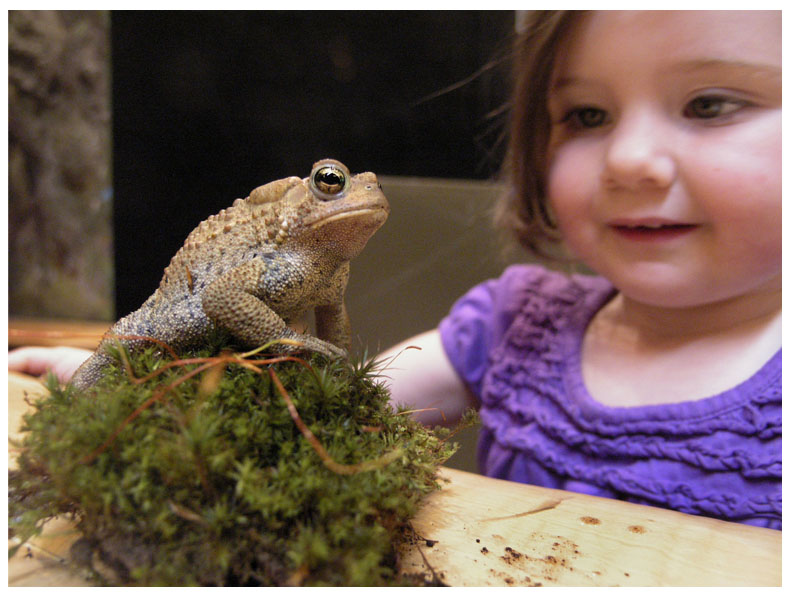 girl with toad