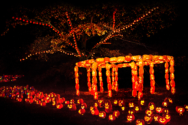 rise of the jack o lanterns long island