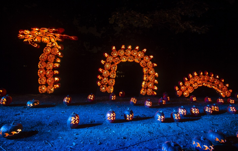 sea serpent at great jack o lantern blaze