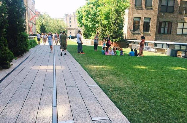23rd street lawn on the highline nyc