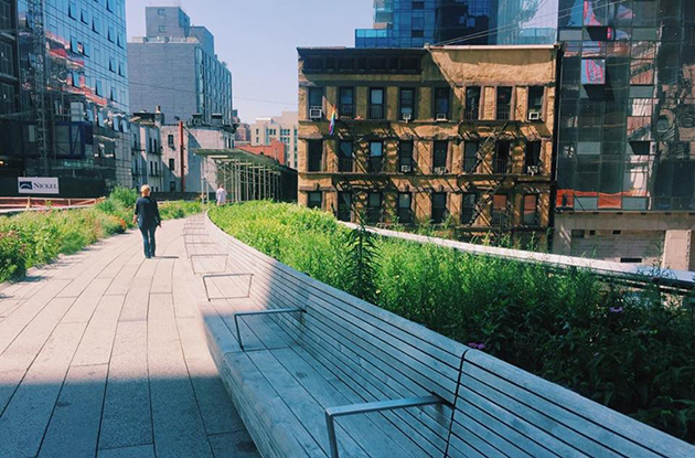 benches on the highline in nyc
