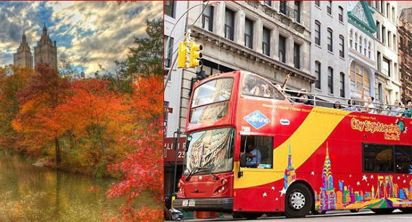 bus tours fall nyc citysightseeing
