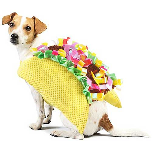 taco halloween costume for pets