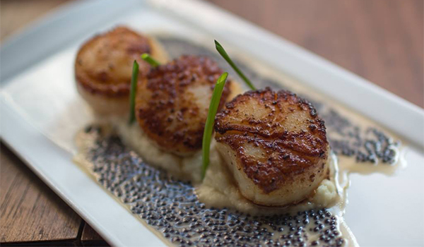 scallops at the sea fire grill