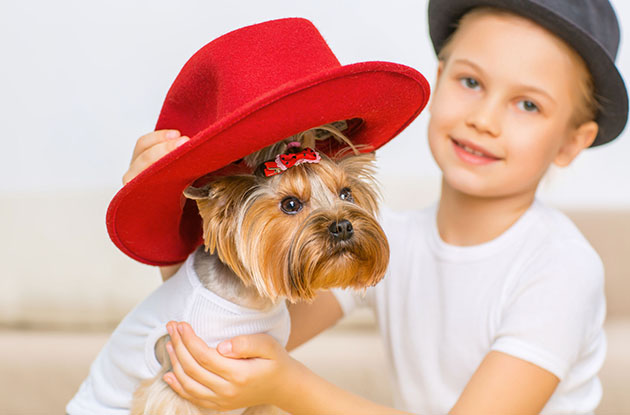 boy dressing up dog