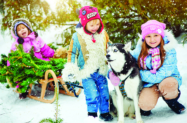 three children with dog christmas trees