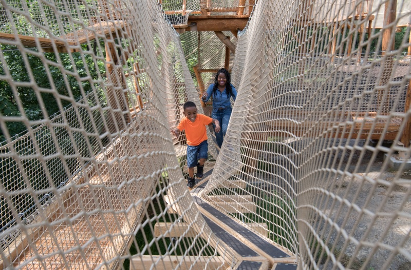 mom and son netted adventure course